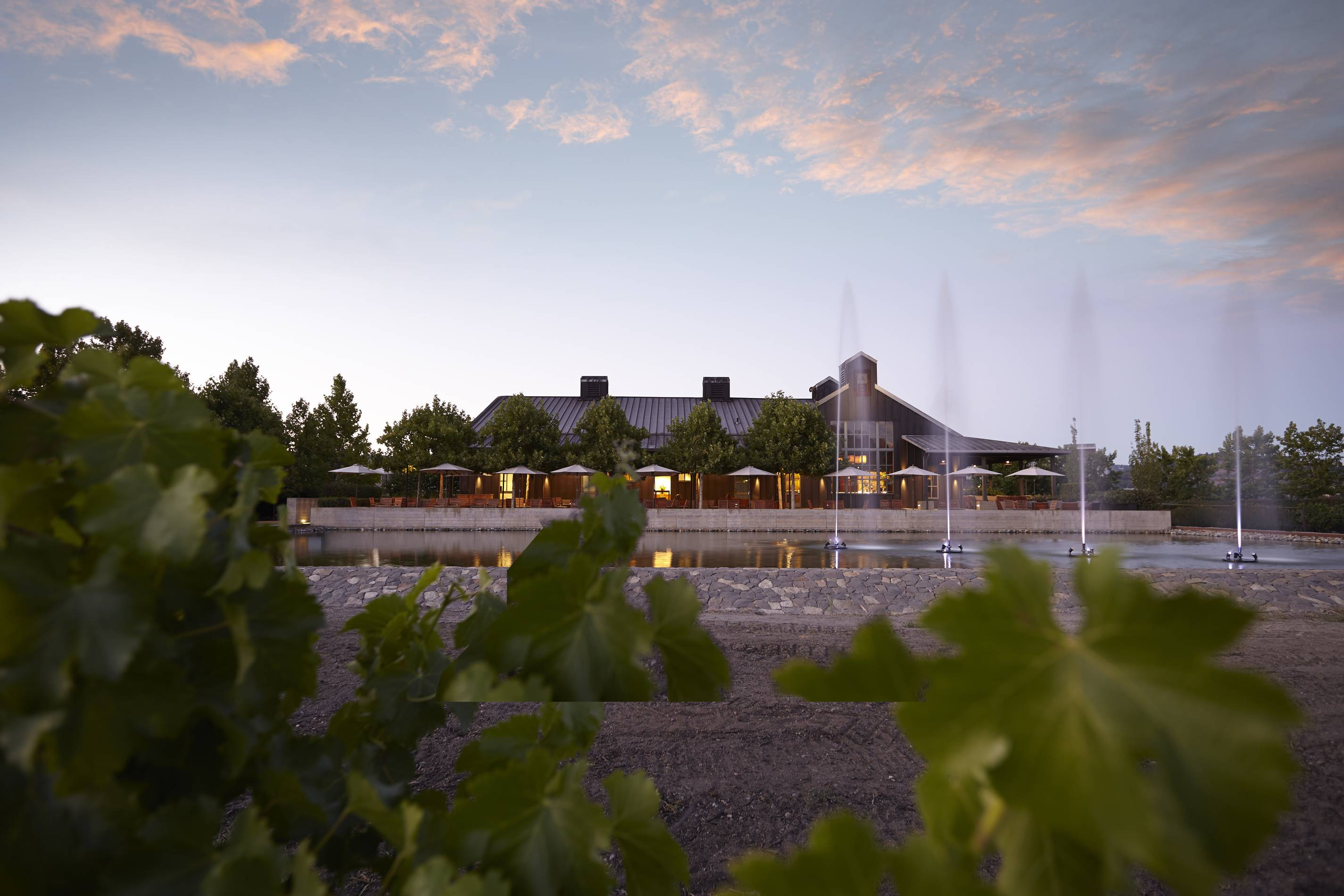 Alpha_Omega_winery_in_Napa_Valley_s_Rutherford_AVA_Courtesy_Alpha_Omega.jpg